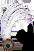Hahnenfedern Weiß