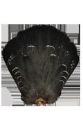 Mountain Cock