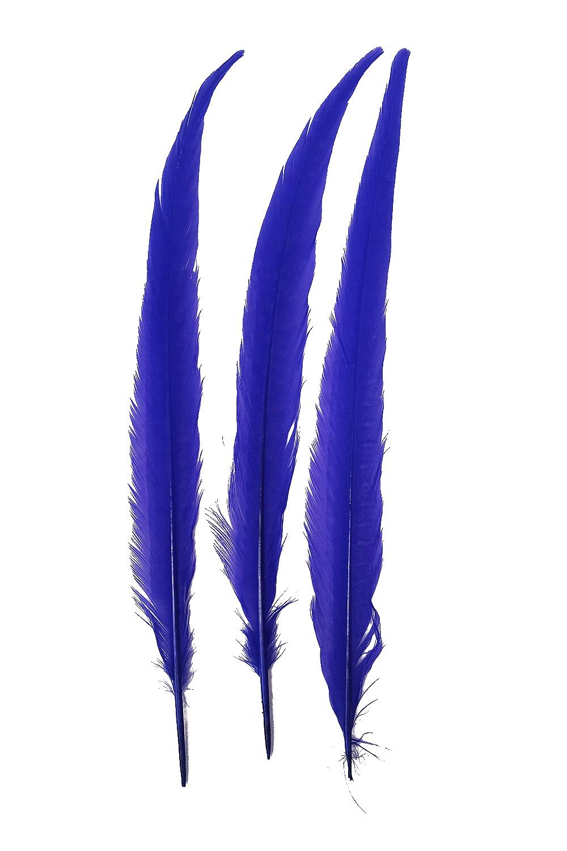 Wildfasanfedern 1.Wahl 30-35cm blau 10er PACK