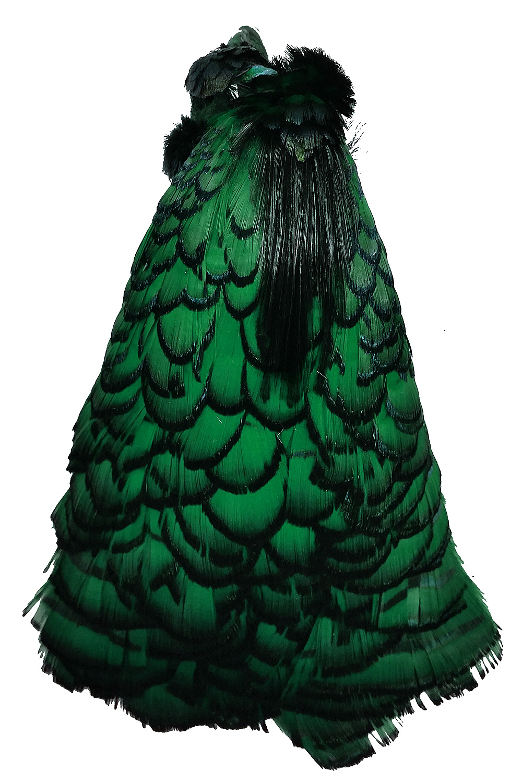 Lady-Amherstfasan Tolle grün