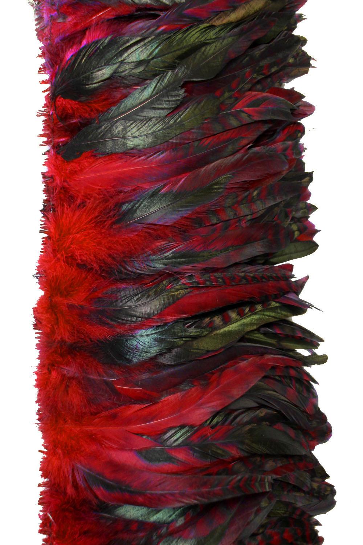Hahnenschlappen Chinchilla 10-15cm rot