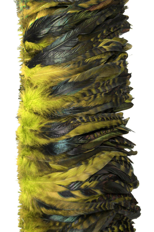 Hahnenschlappen Chinchilla 10-15cm gelb