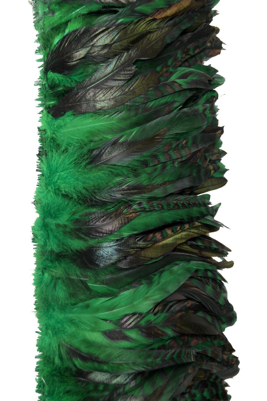 Hahnenschlappen Chinchilla 10-15cm grün