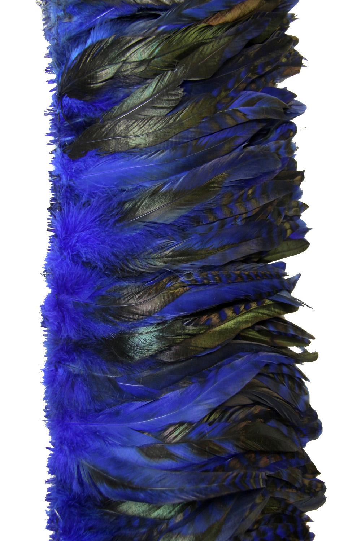 Hahnenschlappen Chinchilla 10-15cm blau