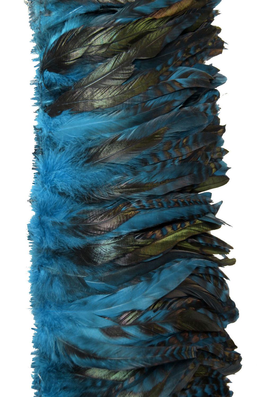 Hahnenschlappen Chinchilla 10-15cm türkis