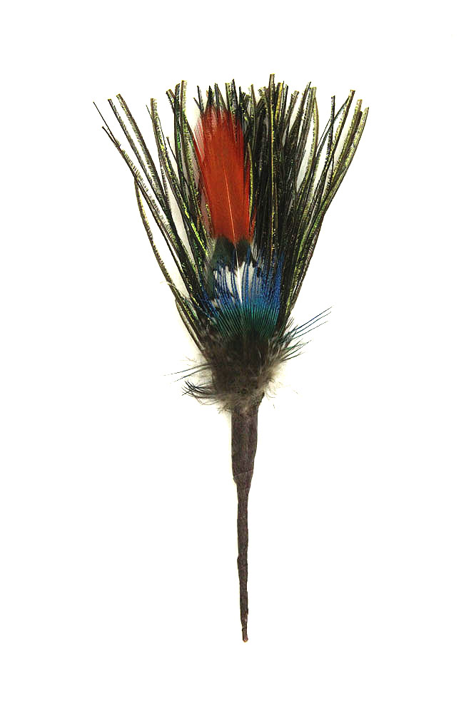 Hutfeder Pfauengras Sprössl Pfau