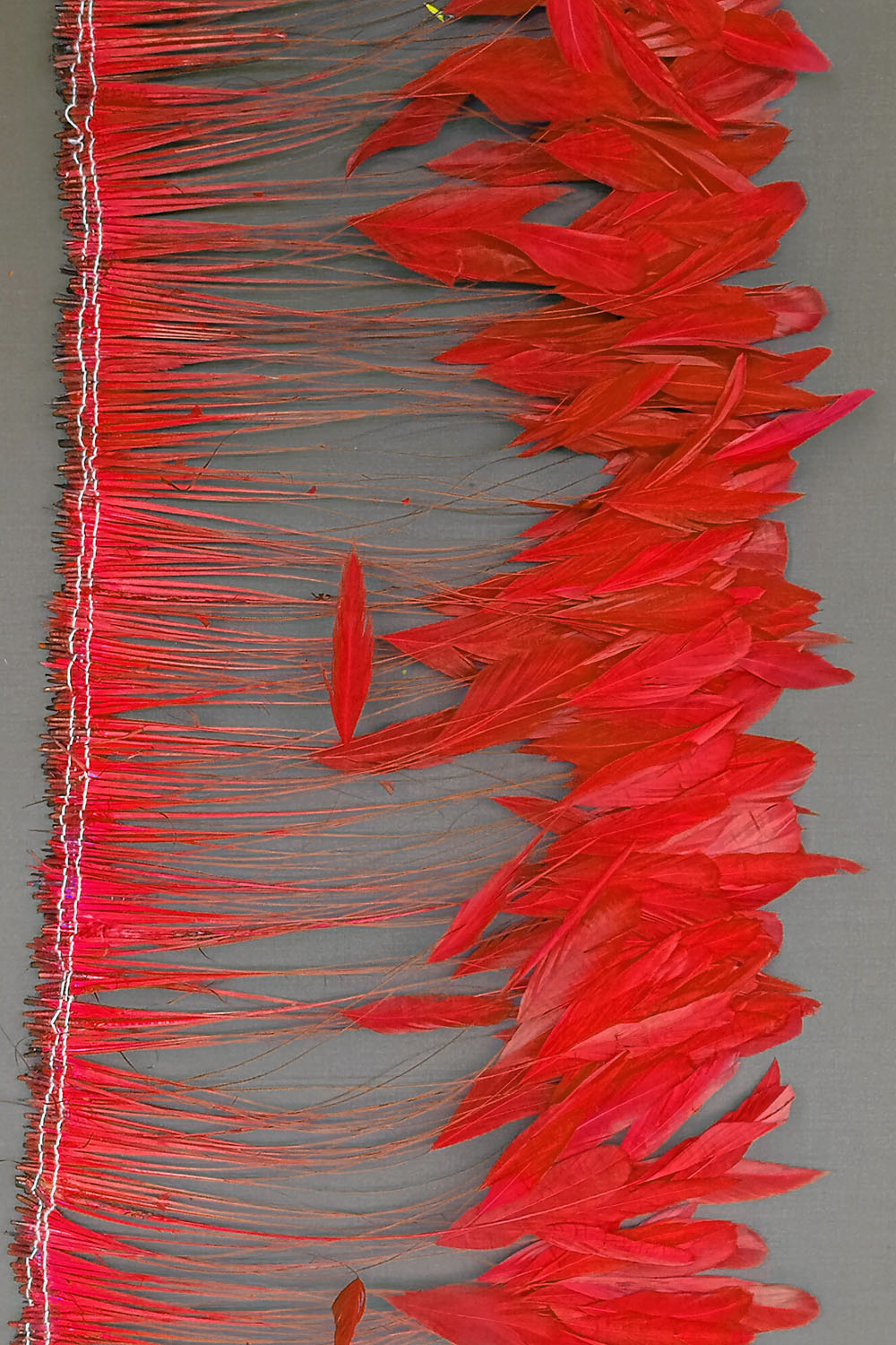 Coque Tips 20-25cm rot