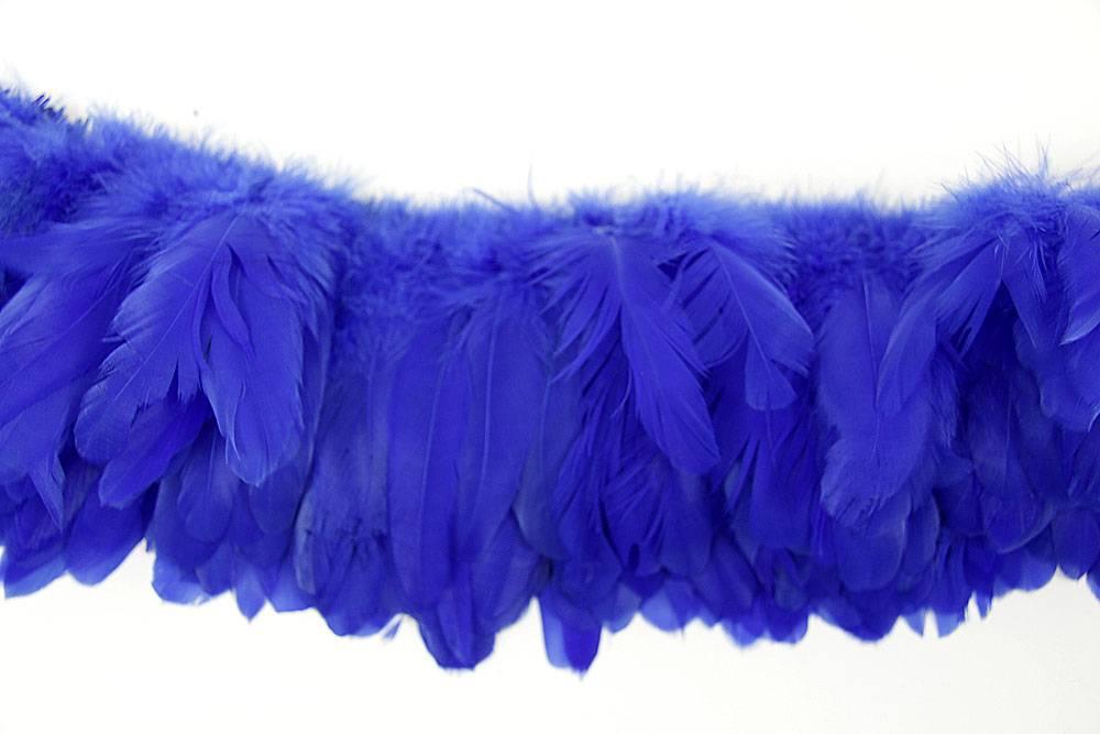 Hahnenschlappen 10-15cm blau