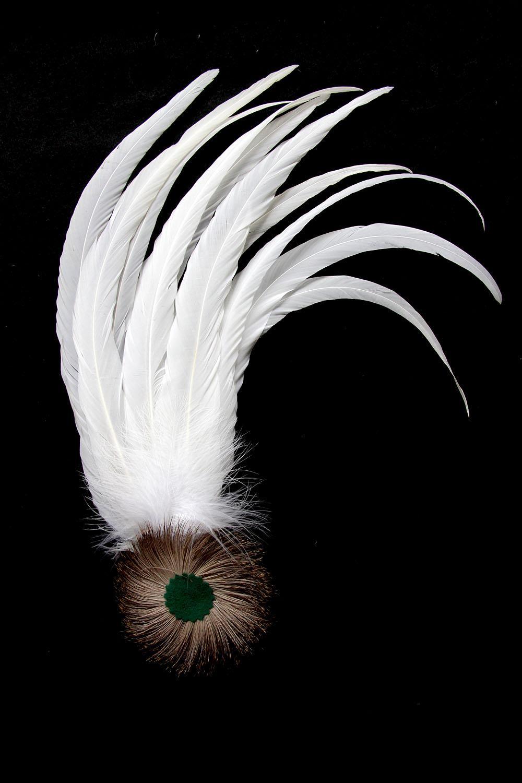 Schützenfeder mit 10 Hahnenfedern weiß + weißem Flaum