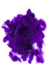 Guinea Fowl Plumage purple, 10g PACK