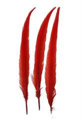 Wildfasanfedern 1.Wahl 30-35cm rot 10er PACK