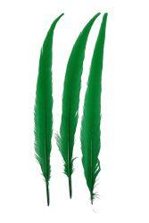 Wildfasanfedern 1.Wahl 30-35cm grün 10er PACK