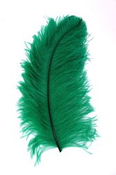 Straußenfeder Karneval 40/50cm grün