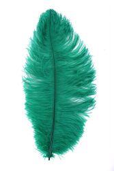 Straußenfeder Karneval 50/60cm grün