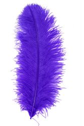 Straußenfeder Karneval 50/60cm lila
