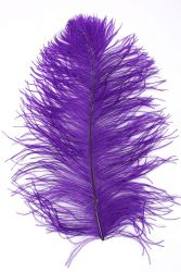 Ostrich Wing middle Q. 40/50cm purple