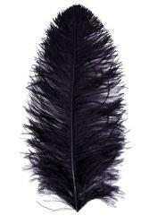Straußenfeder Mittel 50/60cm schwarz