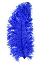 Straußenfeder Ausgesucht 60/70cm blau