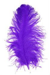 Straußenfeder Ausgesucht 60/70cm lila