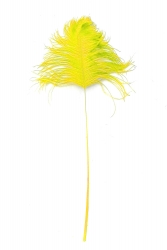 Ostrich Tips 40-50cm yellow