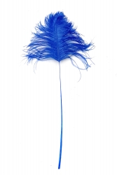 Ostrich Tips 40-50cm blue