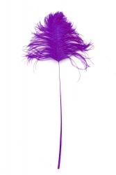 Straußenblinker lila 40-50cm