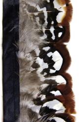 Königsfasanfederborte braun-weiß