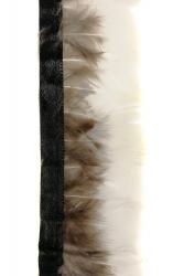 LadyAmherstfederborte Weißseite 50cm