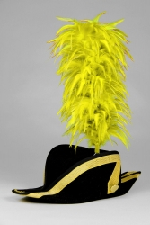 Coque Saddle Hackle 25+5cm sunny-yellow