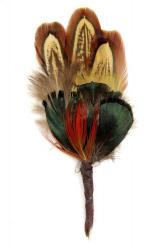 Hat Flower LadyAmherst Golden Pheasant