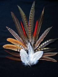 Pheasant Pack Small