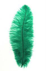 Blondine 1.Wahl grün