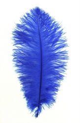 Blondine 1.Wahl blau