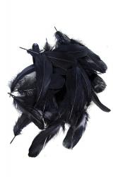 Gänseschulter 15cm UP, schwarz, 10g PACK