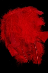 Marabou Full Down loose red, 10g PACK