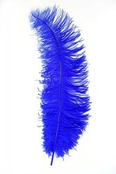 Spadonnas 1. Wahl blau