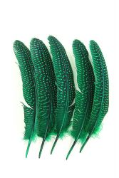 Guinea Fowl Wings green, 5g PACK