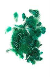 Perlhuhnrupf grün 10g PACK