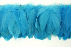 Cock Tails 10-15cm turquoise, Strung Rowed